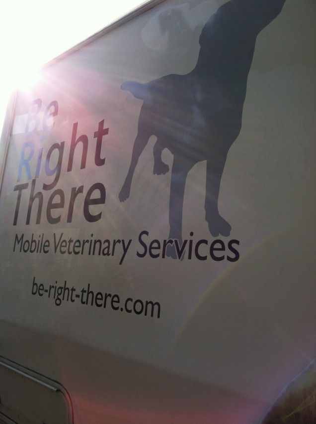 Vehicle Lettering for Be Right There Vet
