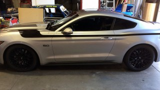 2015 Mustang 5.0 Racing Stripes